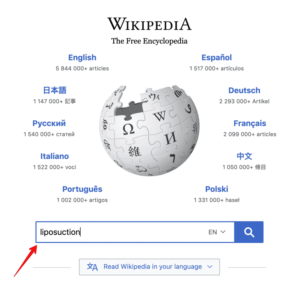 Wikipedia For Keyword Research Seed Keyword